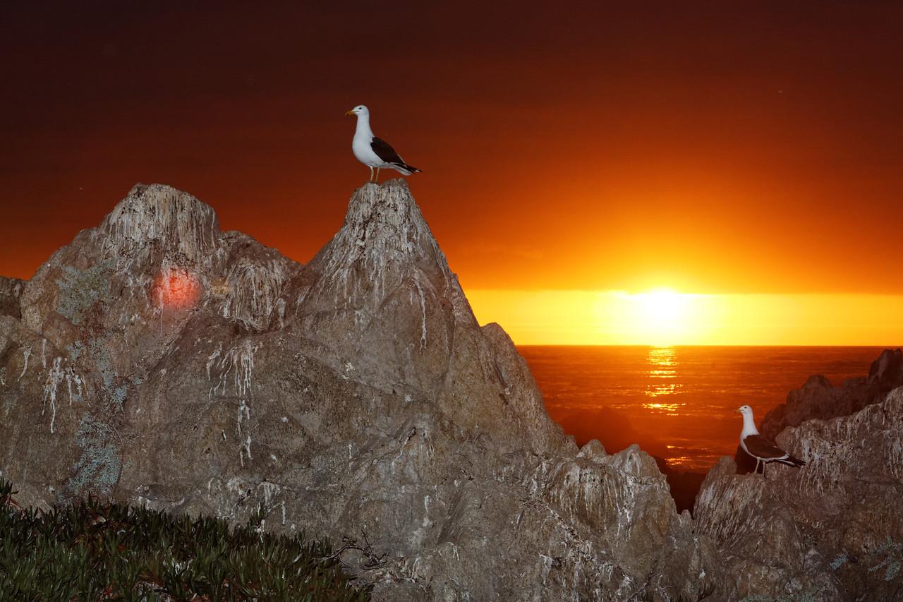 Crepuscule - Las Cruces, Chile