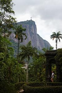 Corcovado - Jardim botanico, Rio