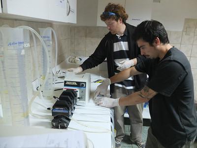 Lab work