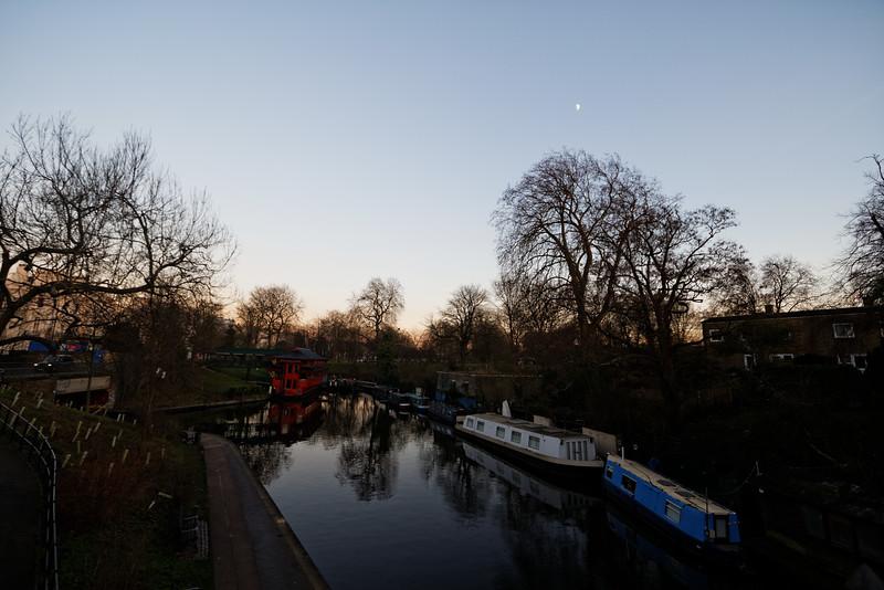 Near London Zoo
