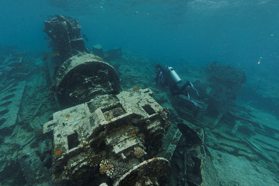 Malayan wreck
