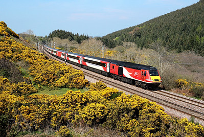 43311 runs through Penmanshiel woods on 1E17 09:40 SuO Inverness - LKX, 21/04/19