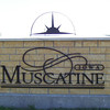 Muscatine sign  ( 2003 )