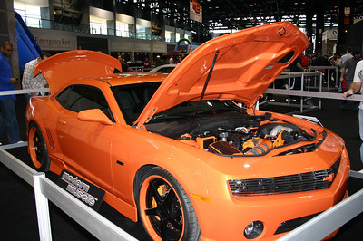Chicago Car Show ( 2010 )