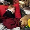Stella and Louie take a nap  ( 2010 )