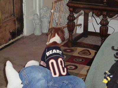Boone is a big Bears fan ( 2011 )