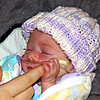 Tiny Kainsley - Kainsley is so tiny!  I got a photo of her holding her Mom's finger to try and show how small her hands seem, even though the fingers are long.  Course her Mom has small hands, so they didn't look as small as they did when I had mine there...but they do still look small.  :-))
