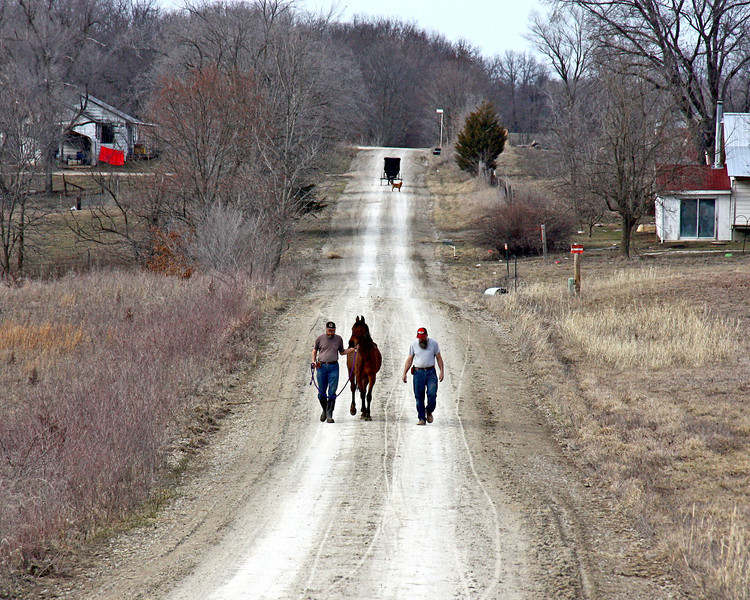 The Long Walk Home - We took the long way around because of the mud and water in the pasture. You can see an Amish buggy heading the other way behind us. It was a long walk, and my knees were hurting, but we made it home. Mark and I took turns holding on to her.