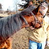 Looking for carrots - Pearl loves her carrots!  LOL  She's looking to see if Galen is hiding any in this photo.