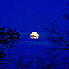 Moonrise - A pretty moon.