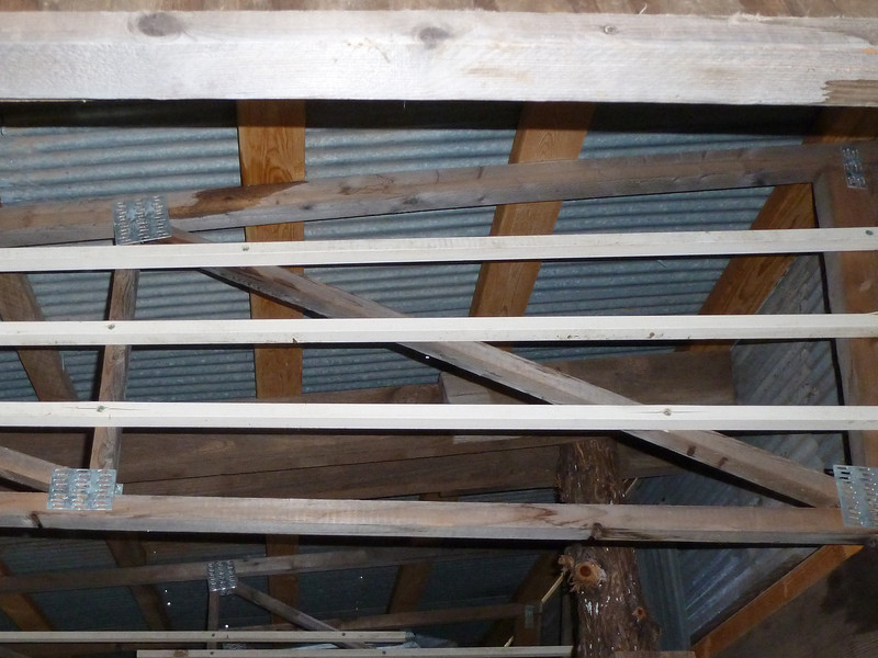 Anti-Roost - This keeps them from sleeping in the rafters.
