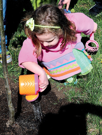 F. BRIAN FERGUSON/THE REGISTER-HERALD=Araya Harford and her fellow Harmony Preschoolers help plant a Bartlett Pear Tree outside the School of Harmony in Beaver during Monday's Earth Day.