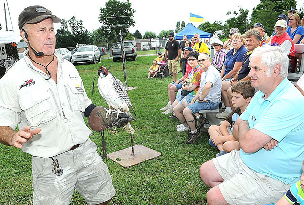 Johnathan Wood, owner of Extreme Raptors, shows off his white gyr falcon during his show at the West Virginia State in Fairlea.<br /> Rick Barbero/The Register-herald