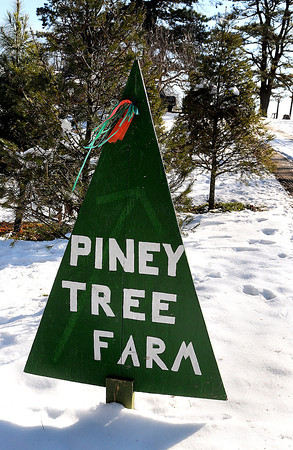 Piney Tree Farm in Piney View. F. Brian Ferguson/The Register-Herald