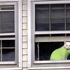 F. BRIAN FERGUSON/THE REGISTER-HERALD=Watch Cat=This fashion conscious feline shows of it's colors while watching over the comings and goings on Court Street in Fayetteville on Tuesday morning.