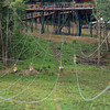 Scouts on the zip line during the  <br /> National Boy Scout Jamboree Monday morning at the new Summit Bechtel Family National Scout Reserve near Glen Jean, WV<br /> Rick Barbero/The Register-Herald