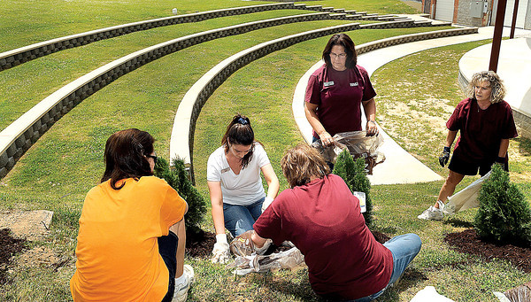 Employees of BB&T plant dozens of Emerald Green Arborvitae trees around the Lively Family Amphitheater on Wednesday afternoon as part of the Lighthouse Project community service. F. Brian Ferguson/The Register Herald