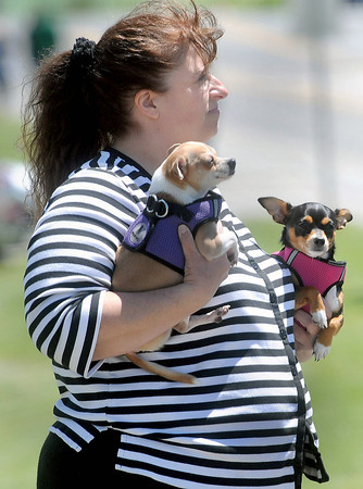 Pam Dunford of Rainelle holds her pets Blue, left, and BB, right as she watches on Saturday during the Rainelle Veterans Reunion parade.F. Brian Ferguson/The Register-Herald