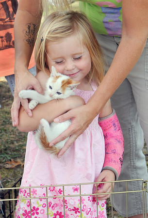 Abby Gill, 3, of Oak Hill gets to know one of the kittens from the Fayette County Humane Society's booth during Saturday's Oak Leaf Parade in downtown Oak Hill. F. Brian Ferguson/The Register-Herald