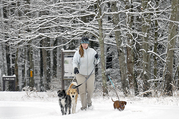 With school being called off in all West Virginia counties, due to the latest winter blast, substitute school teacher Susan Mitchell had plenty of time to walk her dog, as well as those of friends, around Fayetteville Park Trail on Tuesday morning. F. Brian Ferguson/The Register-Herald