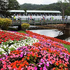 Brightly colored flowers accented the Old White Course on Tuesday at the Greenbrier Classic in White Sulpher Springs. F. Brian Ferguson/The Register-Herald