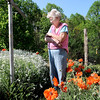 Thelma Davis looks over her flowers which include Summer Snow, left, and Poppies, right, that she planted around her MacArthur home. F. Brian Ferguson/The Register-Herald