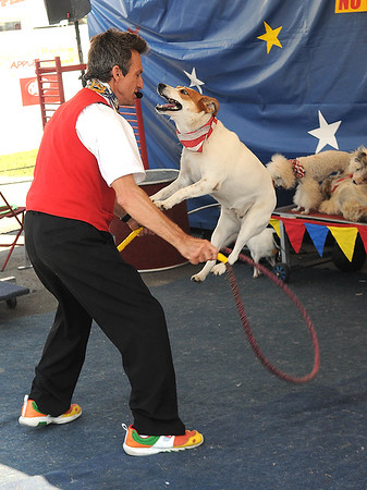 Rick Barbero/The Register-Herald<br /> Dog Show at The WV State Fair in Fairlea.