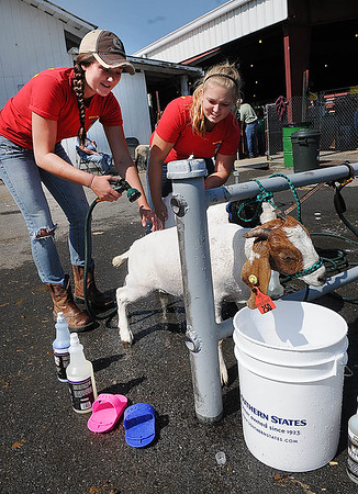 Rick Barbero/The Register-Herald<br /> Kelsey Burgess, left, and Abby Polling, bathing goats at The WV State Fair in Fairlea.