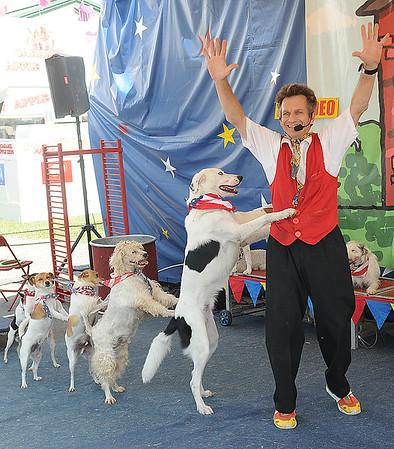 Rick Barbero/The Register-Herald<br /> Dog Show at The WV State Fair in Fairlea.
