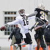 Rick Barbero/The Register-Herald<br /> Brandon Coleman, left, tries to catch a pass against Kenny Phillips during the New Orleans Saints first day of practice held at The Greenbrier Resort in White Sulphur Springs Thursday morning.