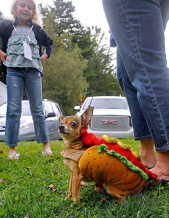 Brad Davis/The Register-Herald<br /> Pint-sized Pet Pageant entry Buster, a 3-year-old chihuahua, patiently waits for the event to begin wearing a hotdog costume as one of it's owners, 7-year-old Danielle Cole (left), stands by Sunday afternoon at the Youth Museum.