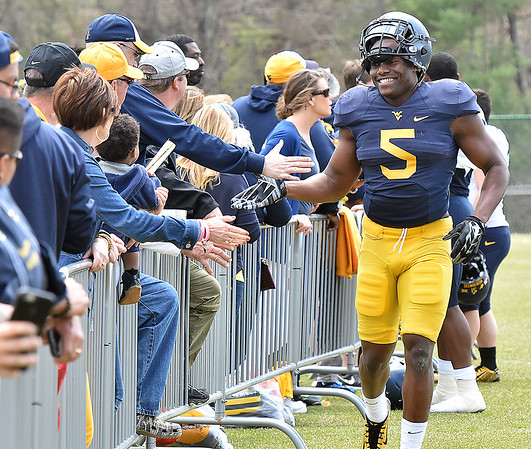 (Brad Davis/The Register-Herald) West Virginia fans of all ages reach for high fives from linebacker Xavier Preston as he exits the field following the Mountaineers' Gold-Blue Spring football game Saturday afternoon at The Greenbrier.