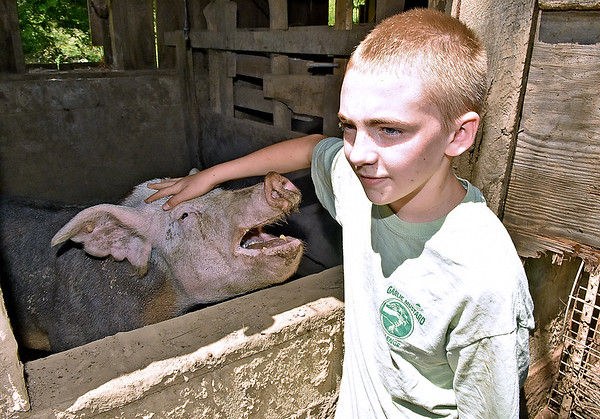 (Brad Davis/The Register-Herald) 13-year-old Levi LaRue pets one of their pigs, a sow named Lucy, on their Williamsburg farm Saturday in Greenbrier County. Levi and his family lost a show pig in the flood, one of six on their farm among several other animals at the time. Today they have four including Lucy.