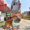 (Brad Davis/The Register-Herald) Operation Underdog's Cory Lacy and Denver during the Kid's Classic Festival Saturday.