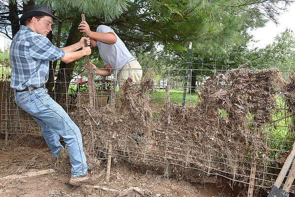 (Brad Davis/The Register-Herald) Hampshire County High School students Garrett Lease, right, and Cameron New, left, pull flood-damaged fencing from the ground as their group of F.F.A. and Animal Veterinary Sciences students help to clean up the LaRues' Williamsburg farm Saturday in Greenbrier County.