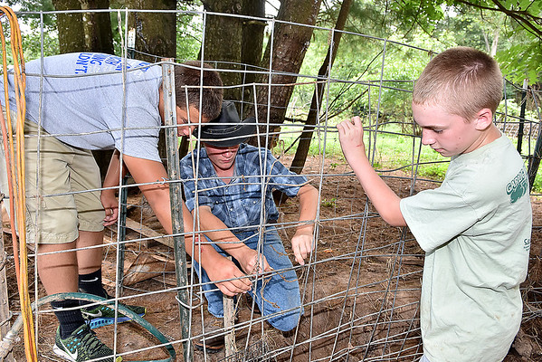 (Brad Davis/The Register-Herald) 13-year-old Levi LaRue, right, assists Hampshire County High School students Garrett Lease, left, and Cameron New, middle, repair fencing on their Williamsburg farm Saturday in Greenbrier County.