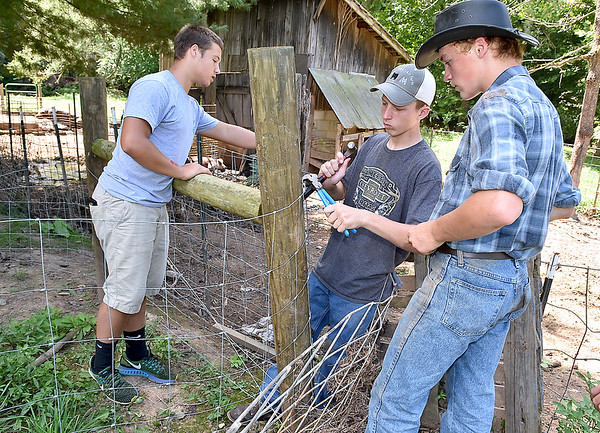 (Brad Davis/The Register-Herald) Hampshire County High School students Garrett Lease, left, Nathan Walkers, middle, and Cameron New, right, repair flood-damaged fencing as their group of F.F.A. and Animal Veterinary Sciences students help to clean up the LaRues' Williamsburg farm Saturday in Greenbrier County.