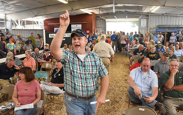 Brian Sparks, of Smoot, taking bidds during the live stock auction held at the West Virginia State Fair in Fairlea.<br /> (Rick Barbero/The Register-Herald)