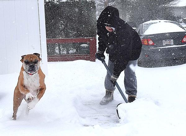 Rick Barbero/The Register-Herald<br /> Sharon Duncan shovels her sidewalk with her dog Katie on Westwood Drive in Beckley Friday morning.