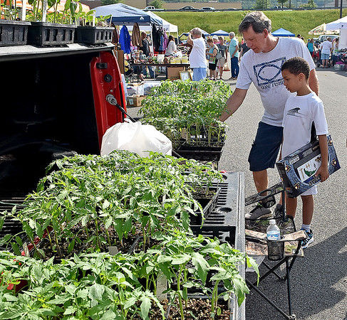 (Brad Davis/The Register-Herald) Almost anything could be found at the market, even starter tomato plants as Beckley residents Ron Kidd and nine-year-old Brody Hunt-Paugh discover during the 21st Annual Newspapers in Education Flea Market & Live Auction Saturday morning in the Marquee Cinemas parking lot.