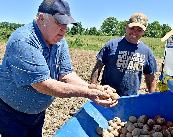 (Brad Davis/The Register-Herald) Guyan Conservation's Bill Stewart, left, and active duty National Guardsman Tony Johnson inspect a batch of chieftain potato seeds before planting them during a Register-Herald visit to the historic farm June 8.