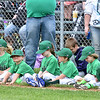 (Brad Davis/The Register-Herald) Teeball players, coaches and families with the Crickets line up on the Beckley Little League field during an opening day ceremony for the teeball league Saturday afternoon.