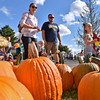 (Brad Davis/The Register-Herald) Attendees stroll past a field of pumpkins as they enjoy the festivities during Burlington United Methodist Family Services annual Pumpkin Festival Saturday afternoon.