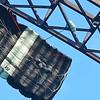 Base jumper jumps off the New Gorge Bridge during Bridge Day in Fayetteville.<br /> (Rick Barbero/The Register-Herald)