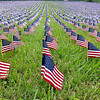 (Brad Davis/The Register-Herald) Over 11,000 small American flags engulf the hillside in front of the Rainelle Medical Center Sunday afternoon as part of the town's Mountaineer Veterans Garden of Honor, which represent each West Virginia soldier killed in action from World War I to present time. L.Z. Rainelle set up the garden as part of the annual West Virginia Veteran's Reunion.
