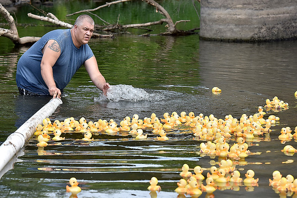 (Brad Davis/The Register-Herald) Race official Mike Cox keeps the duckies on course during this year's installment of the CFM House Museum's Great Rubber Ducky Race Sunday afternoon underneath the Veterans Bridge.