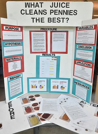 (Brad Davis/The Register-Herald) A wide range of topics and experiments were tackled in young students' quests to solve and understand some of life's greatest challenges during the RESA 1 Regional Science Fair Saturday morning at the Erma Byrd Higher Learning Center.