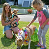 (Brad Davis/The Register-Herald) Five-year-old Maddie Gillespie meets Faith (nearest) and Taco, owned by Valerie Harvey, left, prior to the Kids Classic Dazzling Dog Show Sunday afternoon at the Youth Museum.