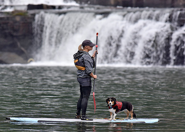(Brad Davis/The Register-Herald) A paddleboarder and her canine companion saunter along as they enjoy a day on the water during the opening moments of Kanawaha Falls Fest Thursday morning in Gauley Bridge. The event was sponsored by ACE Adventure Gear and featured a whitewater kayak race, freestyle kayaking and even a photography contest open to spectators.