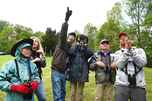 Francisca Trexler, of Lanham, MD, left, Mollee Brown, guide from Fairmont, David and Marcia Irwin, of Niles, Mich., David Trexler, Lanham, MD and Jim Rapp, expert guide from Salisbury, MD. looks for Pine Warblers during the New River Birding and Nature Festival.<br /> (Rick Barbero/The Register-Herald)